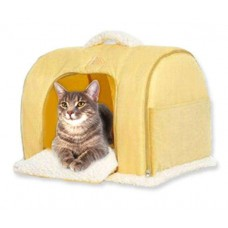 Pet-Star cattery CHICAGO Yellow