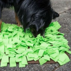 PROCYON sniffing meadow - Green